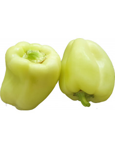 Paprika Babura